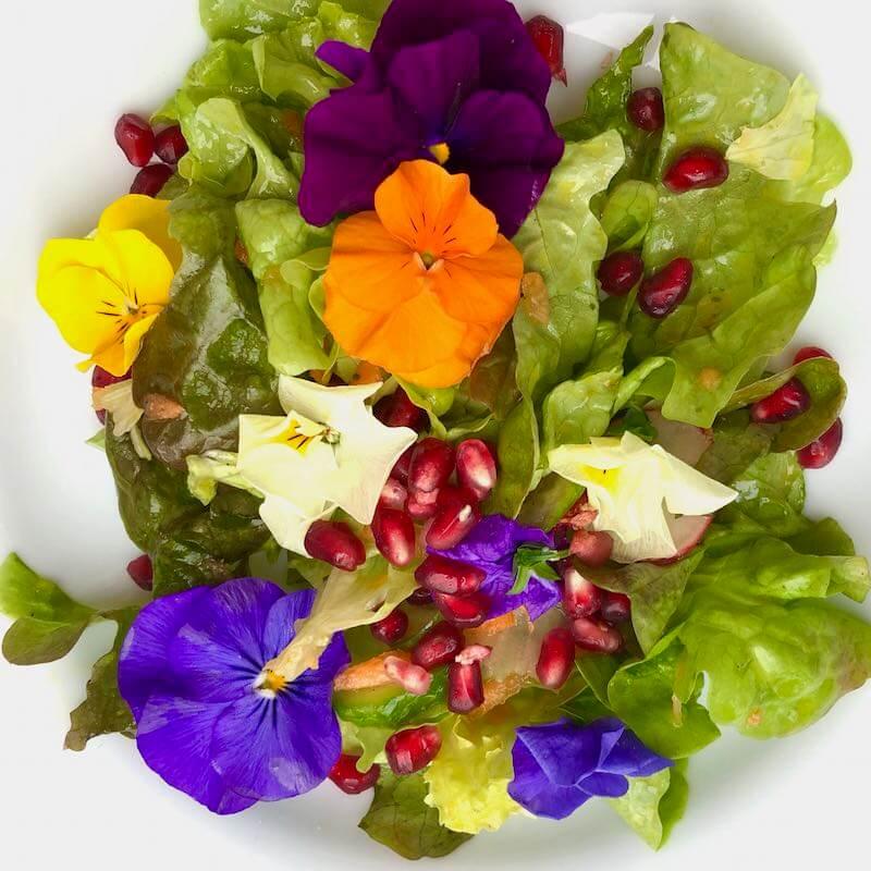 Frühlings-Salat mit Blüten