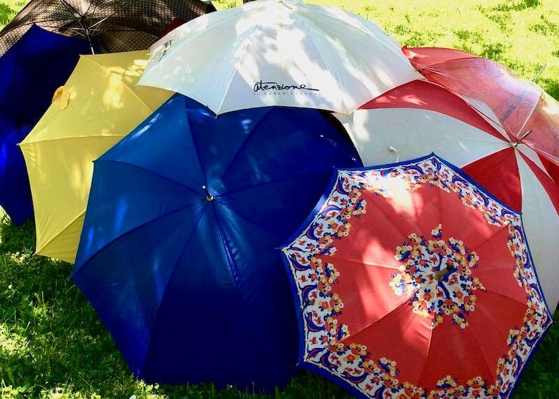 Schirme Immunsystem Schutz